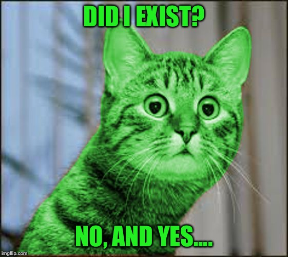 RayCat WTF | DID I EXIST? NO, AND YES.... | image tagged in raycat wtf | made w/ Imgflip meme maker