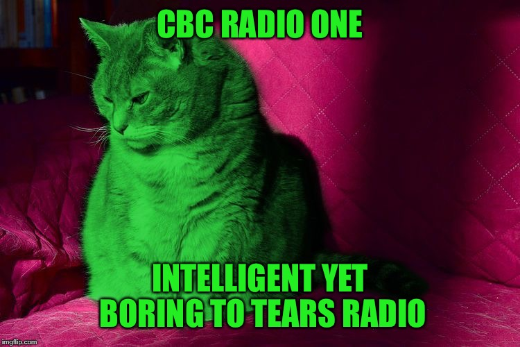 Cantankerous RayCat | CBC RADIO ONE INTELLIGENT YET BORING TO TEARS RADIO | image tagged in cantankerous raycat | made w/ Imgflip meme maker
