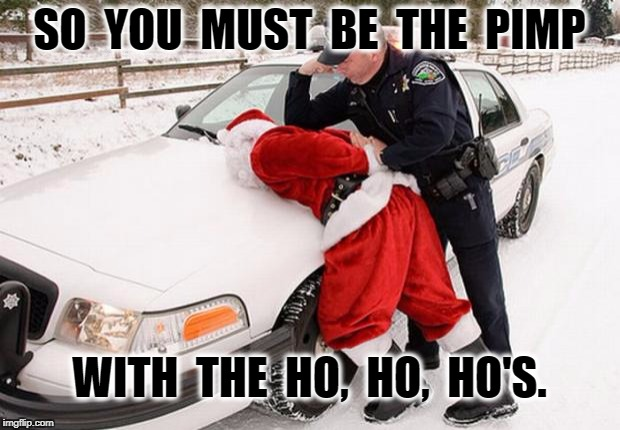 Santa Busted | SO  YOU  MUST  BE  THE  PIMP WITH  THE  HO,  HO,  HO'S. | image tagged in santa busted | made w/ Imgflip meme maker