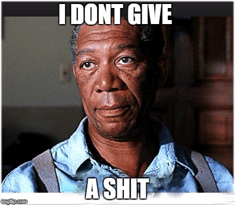 Ya don't say | I DONT GIVE A SHIT | image tagged in hi,morgan freeman,okay,good luck with that,ba bye meme | made w/ Imgflip meme maker