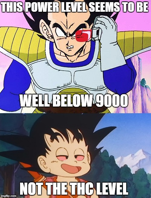 THIS POWER LEVEL SEEMS TO BE WELL BELOW 9000 NOT THE THC LEVEL | made w/ Imgflip meme maker