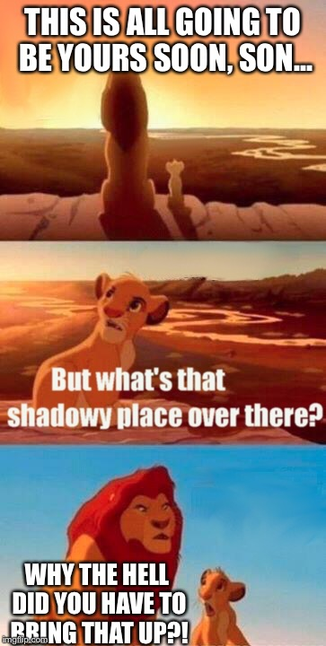 Simba Shadowy Place Meme | THIS IS ALL GOING TO BE YOURS SOON, SON... WHY THE HELL DID YOU HAVE TO BRING THAT UP?! | image tagged in memes,simba shadowy place | made w/ Imgflip meme maker