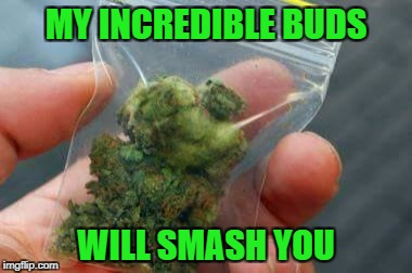 Superhero Week, a Pipe_Picasso and Madolite event Nov 12-18th. | MY INCREDIBLE BUDS WILL SMASH YOU | image tagged in incredible bud,memes,superhero week,the incredible hulk,funny,marijuana | made w/ Imgflip meme maker