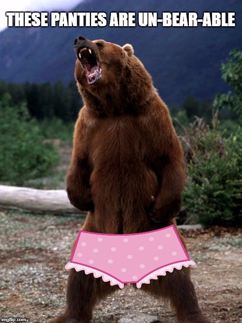 THESE PANTIES ARE UN-BEAR-ABLE | made w/ Imgflip meme maker