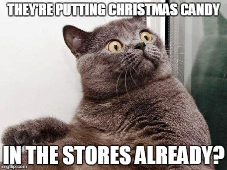 Why it should be there any more than 2 weeks beforehand is beyond me | THEY'RE PUTTING CHRISTMAS CANDY IN THE STORES ALREADY? | image tagged in surprised cat,memes,christmas,war on christmas memes,too early for christmas memes,consumerism | made w/ Imgflip meme maker