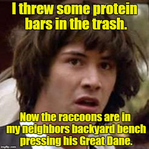 Conspiracy Keanu Meme | I threw some protein bars in the trash. Now the raccoons are in my neighbors backyard bench pressing his Great Dane. | image tagged in memes,conspiracy keanu | made w/ Imgflip meme maker