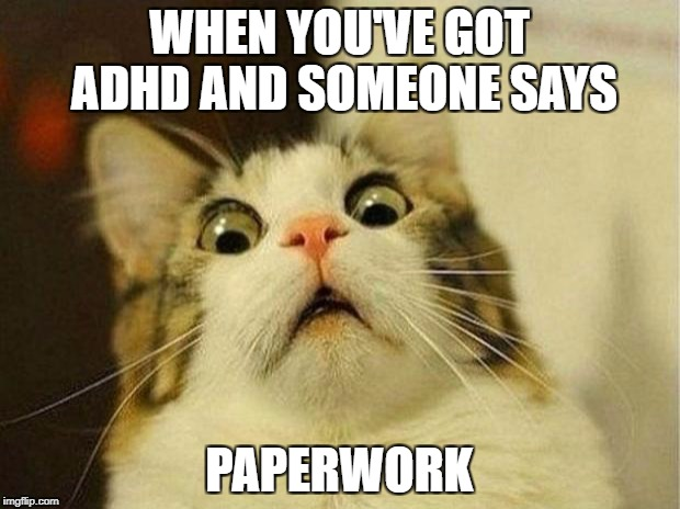 Scared Cat Meme | WHEN YOU'VE GOT ADHD AND SOMEONE SAYS PAPERWORK | image tagged in memes,scared cat | made w/ Imgflip meme maker