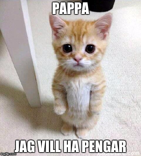 Cute Cat Meme | PAPPA JAG VILL HA PENGAR | image tagged in memes,cute cat | made w/ Imgflip meme maker