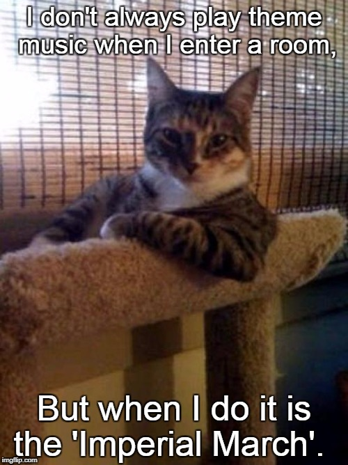 The Most Interesting Cat In The World Meme | I don't always play theme music when I enter a room, But when I do it is the 'Imperial March'. | image tagged in memes,the most interesting cat in the world | made w/ Imgflip meme maker