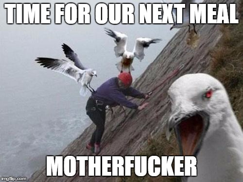Angry Birds | TIME FOR OUR NEXT MEAL MOTHERF**KER | image tagged in angry birds,nsfw,memes,funny,nsfw weekend | made w/ Imgflip meme maker