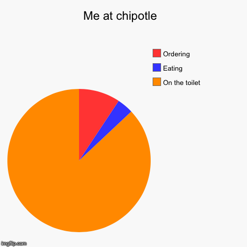 Me at chipotle  | On the toilet, Eating, Ordering | image tagged in funny,pie charts | made w/ Imgflip pie chart maker