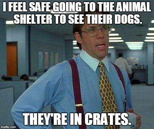 That Would Be Great Meme | I FEEL SAFE GOING TO THE ANIMAL SHELTER TO SEE THEIR DOGS. THEY'RE IN CRATES. | image tagged in memes,that would be great | made w/ Imgflip meme maker