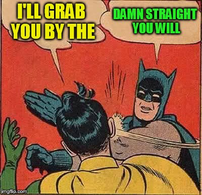 Batman Slapping Robin Meme | I'LL GRAB YOU BY THE DAMN STRAIGHT YOU WILL | image tagged in memes,batman slapping robin | made w/ Imgflip meme maker