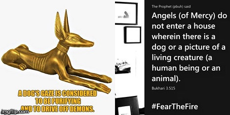 Angels or demons? | image tagged in anubis,picture,islam,dog,angels,demons | made w/ Imgflip meme maker