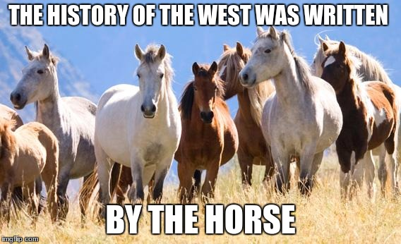THE HISTORY OF THE WEST WAS WRITTEN BY THE HORSE | image tagged in all the horses | made w/ Imgflip meme maker