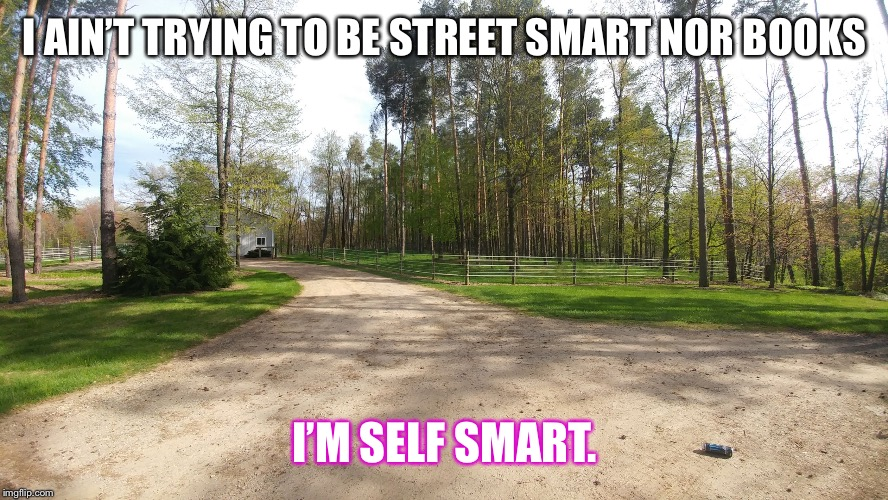 dirt road | I AIN'T TRYING TO BE STREET SMART NOR BOOKS I'M SELF SMART. | image tagged in dirt road | made w/ Imgflip meme maker