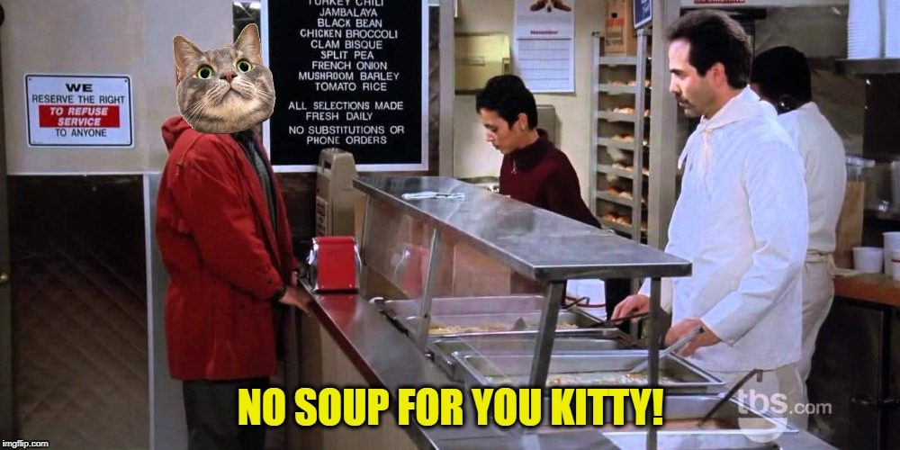 NO SOUP FOR YOU KITTY! | made w/ Imgflip meme maker