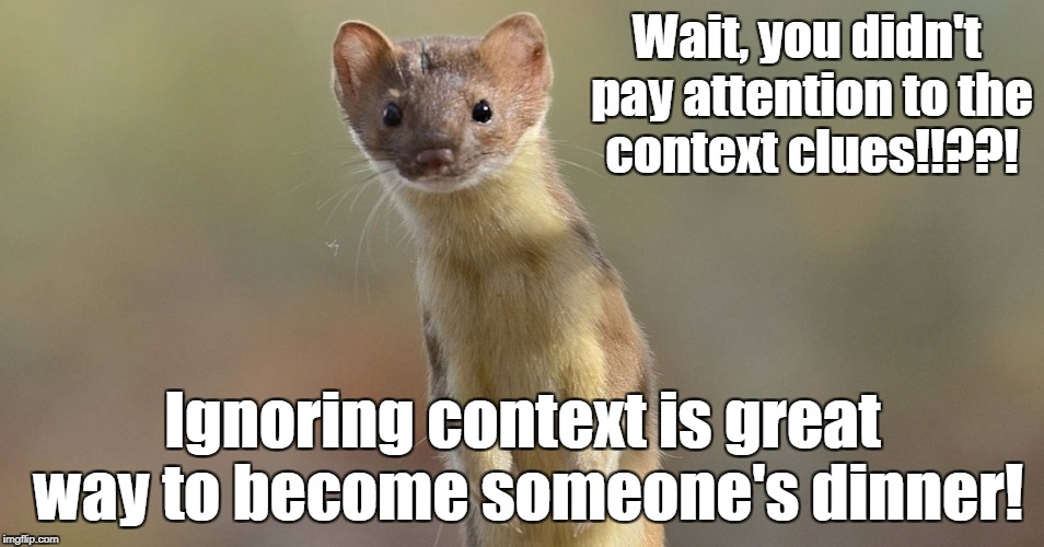 Wait, you didn't pay attention to the context clues!!??! Ignoring context is great way to become someone's dinner! | image tagged in you stupidweasel | made w/ Imgflip meme maker