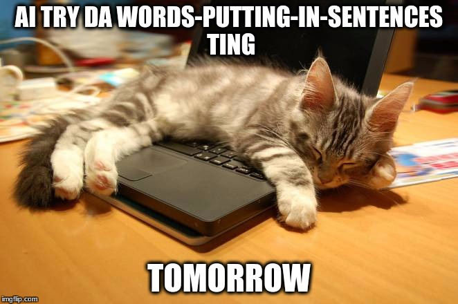 AI TRY DA WORDS-PUTTING-IN-SENTENCES TING TOMORROW | image tagged in cat,computer,writing | made w/ Imgflip meme maker