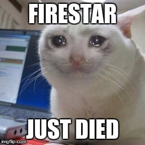 Firestar Just Died | FIRESTAR JUST DIED | image tagged in crying cat,warrior cats | made w/ Imgflip meme maker
