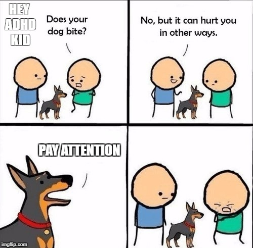 does your dog bite | HEY ADHD KID PAY ATTENTION | image tagged in does your dog bite | made w/ Imgflip meme maker