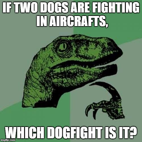 Philosoraptor Meme | IF TWO DOGS ARE FIGHTING IN AIRCRAFTS, WHICH DOGFIGHT IS IT? | image tagged in memes,philosoraptor | made w/ Imgflip meme maker