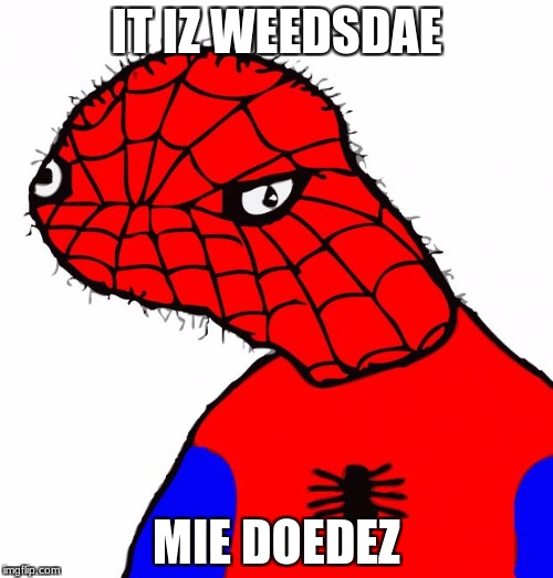 Spoderman | IT IZ WEEDSDAE MIE DOEDEZ | image tagged in spoderman | made w/ Imgflip meme maker
