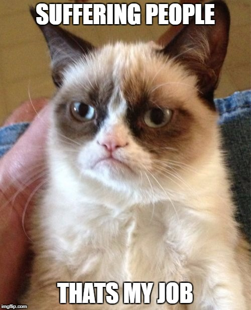 Grumpy Cat Meme | SUFFERING PEOPLE THATS MY JOB | image tagged in memes,grumpy cat | made w/ Imgflip meme maker