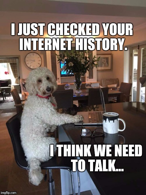 We need to talk... | image tagged in dog,internet,memes | made w/ Imgflip meme maker