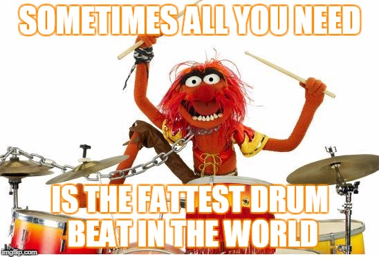 To cheer you up after a long week at work | SOMETIMES ALL YOU NEED IS THE FATTEST DRUM BEAT IN THE WORLD | image tagged in animal drums | made w/ Imgflip meme maker