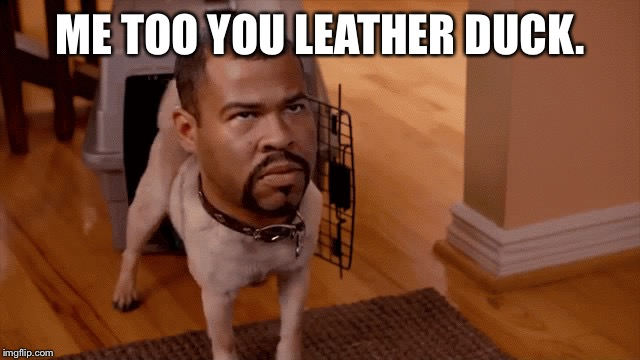 Gon gon | ME TOO YOU LEATHER DUCK. | image tagged in gon gon | made w/ Imgflip meme maker