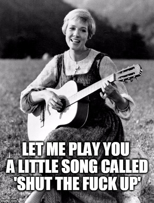 Julie says shut the fuck up! | LET ME PLAY YOU A LITTLE SONG CALLED 'SHUT THE F**K UP' | image tagged in guitar,julie andrews,shut the fuck up,sound of music,the sound of music | made w/ Imgflip meme maker