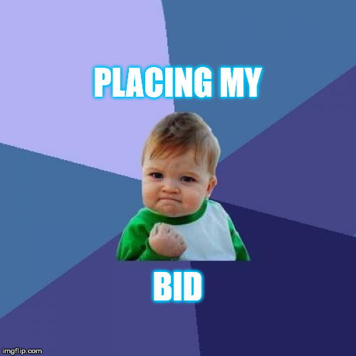 Success Kid Meme | PLACING MY BID | image tagged in memes,success kid | made w/ Imgflip meme maker