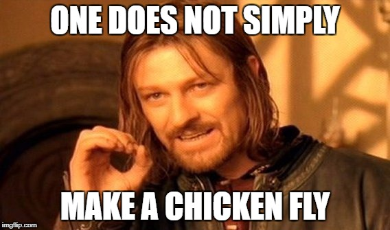One Does Not Simply Meme | ONE DOES NOT SIMPLY MAKE A CHICKEN FLY | image tagged in memes,one does not simply | made w/ Imgflip meme maker