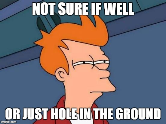 Futurama Fry Meme | NOT SURE IF WELL OR JUST HOLE IN THE GROUND | image tagged in memes,futurama fry | made w/ Imgflip meme maker