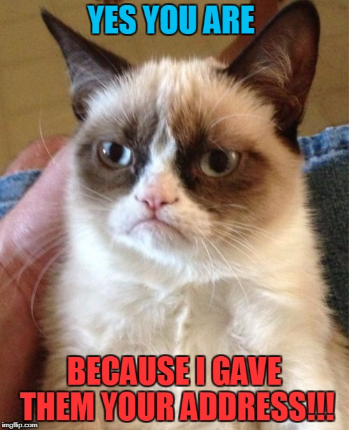 Grumpy Cat Meme | YES YOU ARE BECAUSE I GAVE THEM YOUR ADDRESS!!! | image tagged in memes,grumpy cat | made w/ Imgflip meme maker