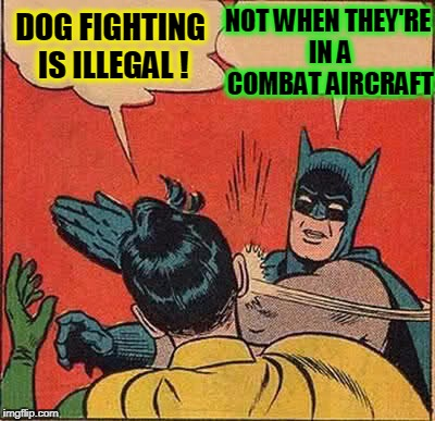 Batman Slapping Robin Meme | DOG FIGHTING IS ILLEGAL ! NOT WHEN THEY'RE IN A COMBAT AIRCRAFT | image tagged in memes,batman slapping robin | made w/ Imgflip meme maker