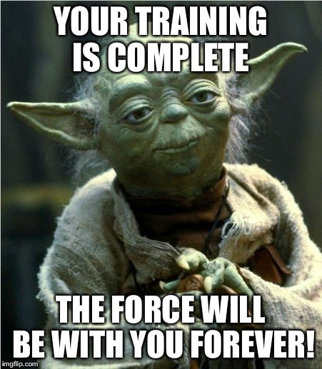 Jedi Master Yoda | YOUR TRAINING IS COMPLETE THE FORCE WILL BE WITH YOU FOREVER! | image tagged in jedi master yoda | made w/ Imgflip meme maker