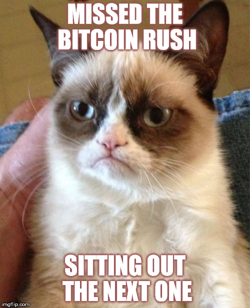 Grumpy Cat Meme | MISSED THE BITCOIN RUSH SITTING OUT THE NEXT ONE | image tagged in memes,grumpy cat | made w/ Imgflip meme maker