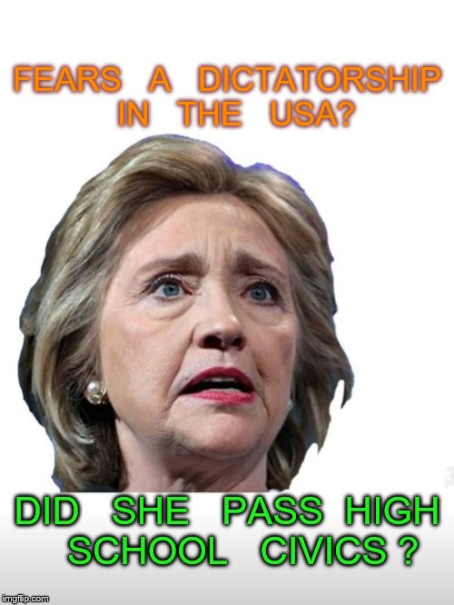 demagogue | FEARS   A   DICTATORSHIP  IN   THE   USA? DID   SHE   PASS  HIGH   SCHOOL   CIVICS ? | image tagged in hillary clinton | made w/ Imgflip meme maker