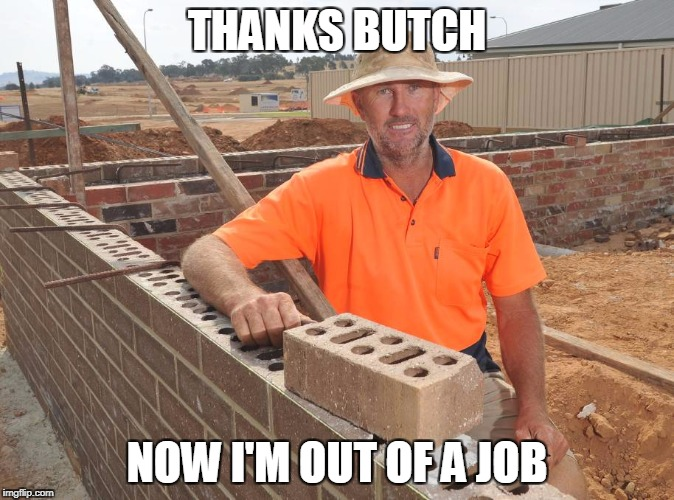 Thanks Butch Jones | THANKS BUTCH NOW I'M OUT OF A JOB | image tagged in bricks,memes,butch jones | made w/ Imgflip meme maker