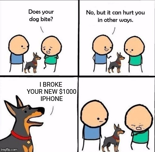 does your dog bite | I BROKE YOUR NEW $1000 IPHONE | image tagged in does your dog bite | made w/ Imgflip meme maker