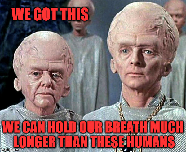WE GOT THIS WE CAN HOLD OUR BREATH MUCH LONGER THAN THESE HUMANS | image tagged in big heads | made w/ Imgflip meme maker