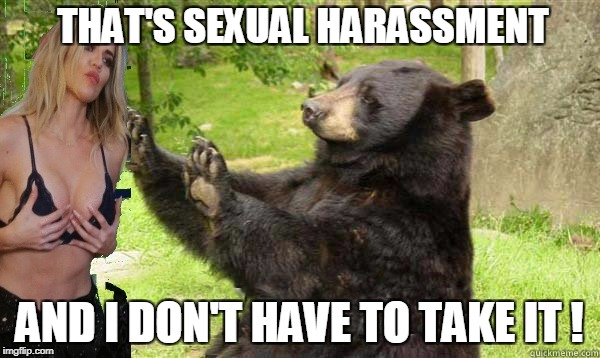 THAT'S SEXUAL HARASSMENT AND I DON'T HAVE TO TAKE IT ! | made w/ Imgflip meme maker