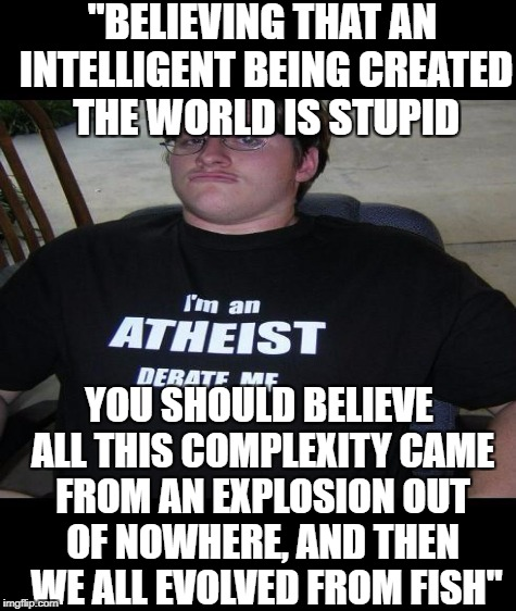 """BELIEVING THAT AN INTELLIGENT BEING CREATED THE WORLD IS STUPID YOU SHOULD BELIEVE ALL THIS COMPLEXITY CAME FROM AN EXPLOSION OUT OF NOWHER 