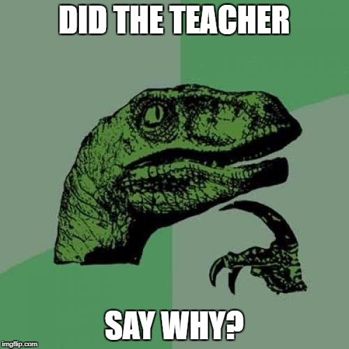 Philosoraptor Meme | DID THE TEACHER SAY WHY? | image tagged in memes,philosoraptor | made w/ Imgflip meme maker
