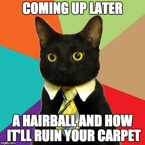 6 O'Clock Meowsman | COMING UP LATER A HAIRBALL AND HOW IT'LL RUIN YOUR CARPET | image tagged in memes,business cat | made w/ Imgflip meme maker