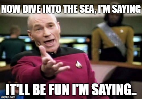Picard Wtf Meme | NOW DIVE INTO THE SEA, I'M SAYING IT'LL BE FUN I'M SAYING.. | image tagged in memes,picard wtf | made w/ Imgflip meme maker