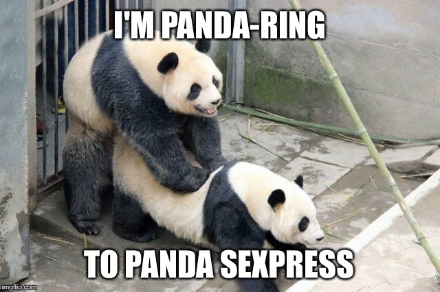 Panda sex | I'M PANDA-RING TO PANDA SEXPRESS | image tagged in panda sex | made w/ Imgflip meme maker