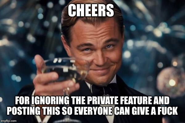 Leonardo Dicaprio Cheers Meme | CHEERS FOR IGNORING THE PRIVATE FEATURE AND POSTING THIS SO EVERYONE CAN GIVE A F**K | image tagged in memes,leonardo dicaprio cheers | made w/ Imgflip meme maker